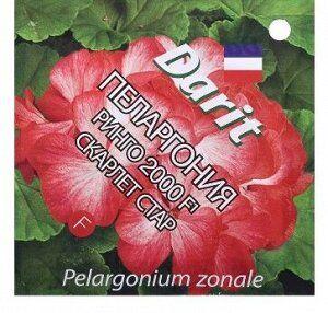 """Семена Семена цветов Пеларгония """"Ринго 2000"""" F1 Скарлет Стар, Мн, 4 шт. Пеларгония серии Ringo 2000 F1 имеет все критерии и характеристики, соответствующие первоклассному гибриду. Характеризуется комп"""
