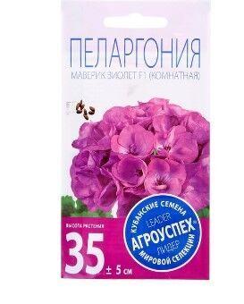 Семена Семена комнатных цветов Пеларгония Маверик Виолет, 4 шт. Отличается обильным цветением крупными шапками цветов. Листва насыщенно-зеленого цвета с легким бронзовым кольцом. Цветы простые, крупны