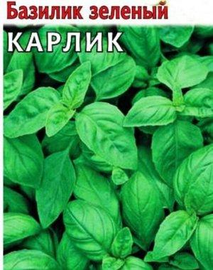 Базилик Карлик, зеленый