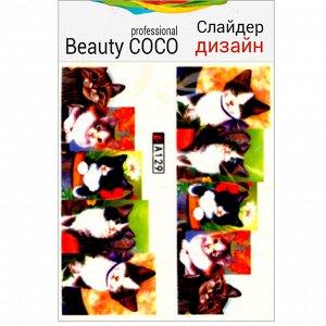 Beauty COCO, Слайдер-дизайн A-129