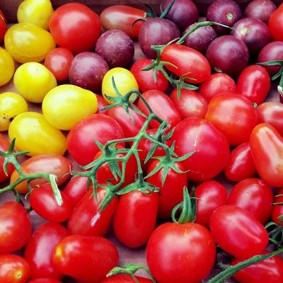 Огромная распродажа семян! +Предзаказ крутого чеснока и лука — Томат (семена) — Семена овощей
