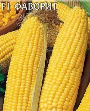 Кукуруза Фаворит сахарная