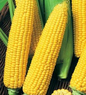 Кукуруза сахарная Детский Вкус