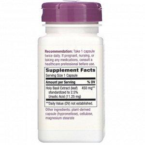 Nature&#x27 - s Way, Holy Basil, 450 mg, 60 Vegan Capsules