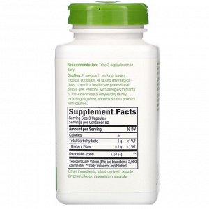 Nature&#x27 - s Way, Корень одуванчика, 525 мг, 180 растительных капсул