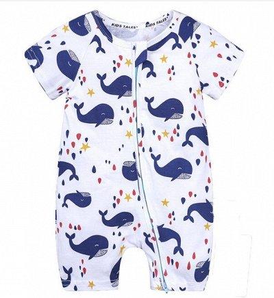 👶Детское счастье! Отличная одежда, обувь, аксы для малышей 👶 — Песочники — Боди и песочники