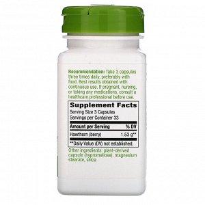 Nature&#x27 - s Way, Hawthorn Berries, 1,530 mg, 100 Vegan Capsules