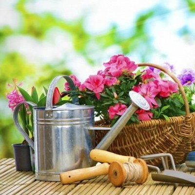 Товары для Дома и Гигиены — Садовый инвентарь и инструмент, удобрения — Садовые инструменты