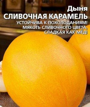 Дыня Сливочная Карамель
