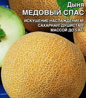 Дыня Медовый Спас