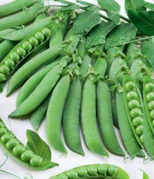 Горох овощной Дарунок Лущильный