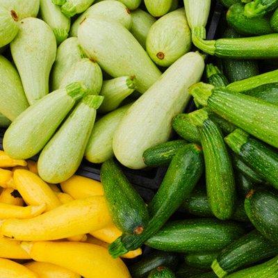 Огромная распродажа семян! +Предзаказ крутого чеснока и лука — Кабачок (семена) — Семена овощей
