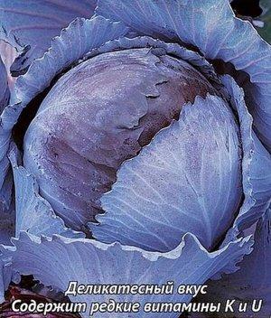 Капуста к/к Победа