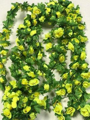 Лиана роза чайная 1,9м бутон 4 см.Цвет желтый.