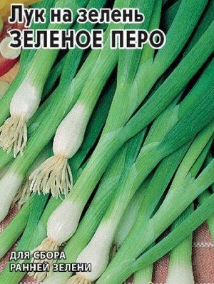 Лук батун Зеленое перо