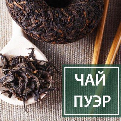 Профессиональная линейка для ресторанов и кафе — Чай Пуэр — Чайные напитки