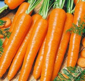 Морковь Морелия F1