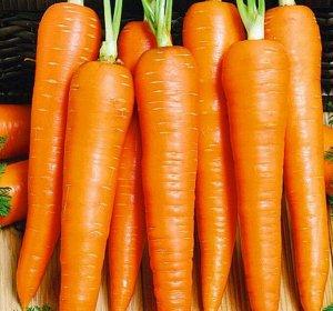 Морковь Принцесса F1