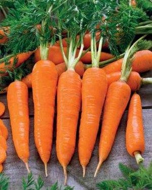Морковь Флакки