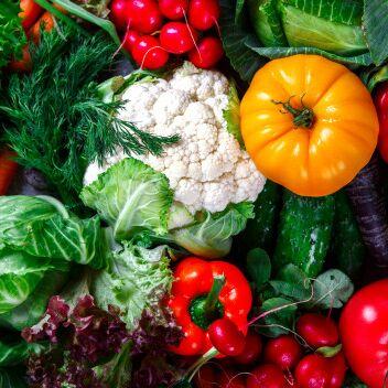 Всё, что нужно каждый день! Зонты получили!  — Для дачников! Семена, удобрения, горшочки — Семена овощей