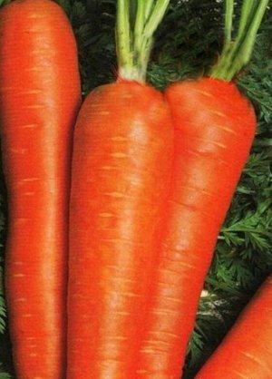 Морковь Нирим F1