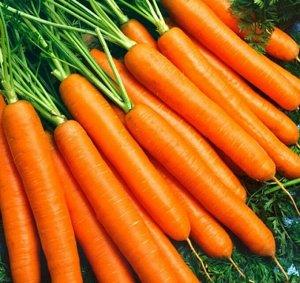 Морковь Эксельсо F1