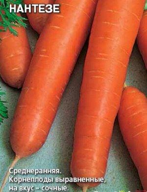 Морковь Нантезе