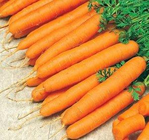 Морковь сахарная соломка