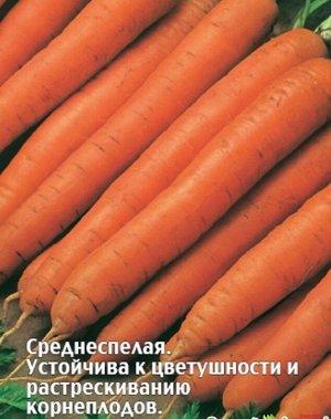 Морковь Варвара