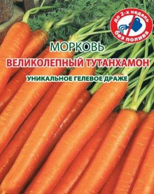 Морковь Великолепный Тутанхамон