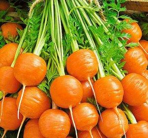 Морковь Рондо F1