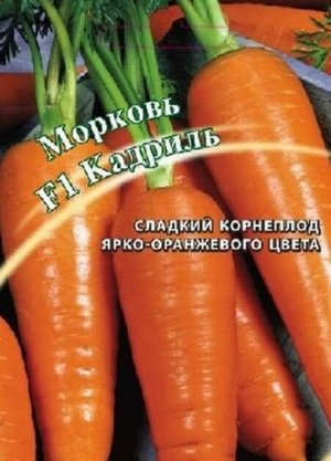 Морковь F1 Кадриль (сортотип Курода) автор