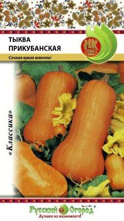 Тыква Прикубанская (2г)