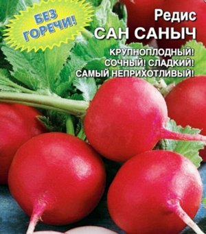 Редис Сан Саныч