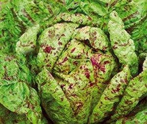 Салат листовой Королевский пир®