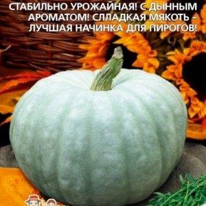 Тыква Крошечка-Хаврошечка крупноплодная