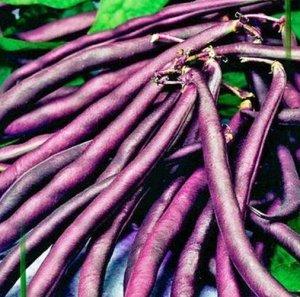 Фасоль овощная Бемоль
