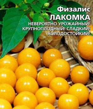 Физалис Лакомка