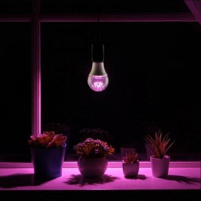 САД-огород, обустройство сада, освещение, удобрения. — Товары для рассады — Садовый инвентарь