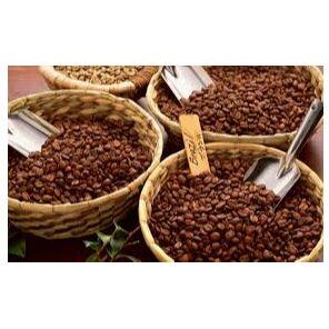 Готовим с удовольствием-13. — Кофе зерновой — Кухня