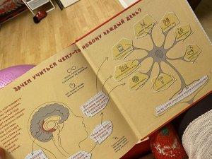 Как устроен мозг? Книга о том, зачем учиться чему-то новому каждый день