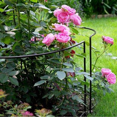 Sweet Garden. Всё для сада и огорода.  — Опора и поддержка для растений, колышки — Садовый инвентарь