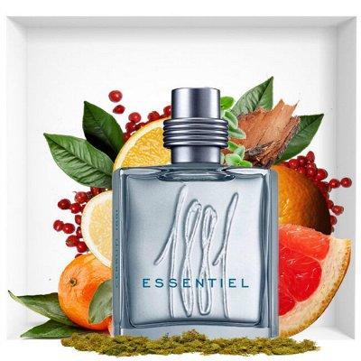 Элитная косметика и парфюмерия . Майская акция — Nino Cerruti — Парфюмерия
