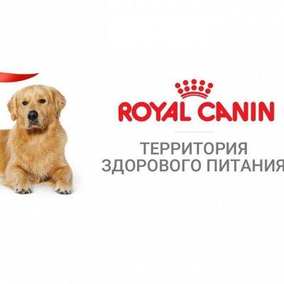 Зверьё Мое — корма, лакомства, аксессуары.  — Royal Canin корм для собак — Корма