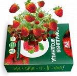 Набор для выращивания Крупной клубники домашняя ягодница, чудо ягодница, сказочный сбор