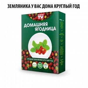 Набор для выращивания Земляники домашняя ягодница, чудо ягодница, сказочный сбор