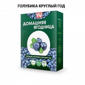 Набор для выращивания Голубика круглый год домашняя ягодница, чудо ягодница, сказочный сбор