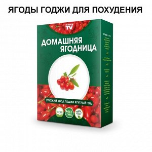 Набор для выращивания Ягоды годжи круглый год домашняя ягодница, чудо ягодница, сказочный сбор