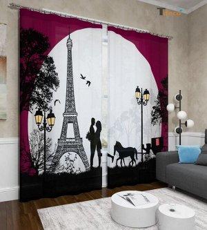 Парижская романтика. Размер 3х2,6м.