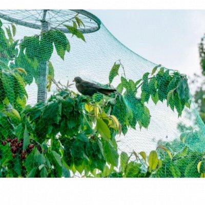 NEW!!!Увеличивающий экран на телефон . — Сетка защитная для сада и огорода — Парники и теплицы